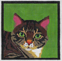 Tabby Mini Cat Canvas