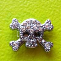 Sheenas Skull Magnet