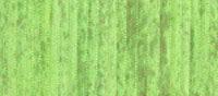 4mmSilkRibbon-120 over dyed Summer Green